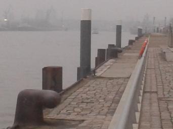 Hafencity 1